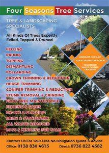 Tree-&-Landscaping-Flyer-Design